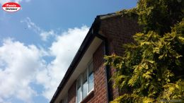 Black ash fascias with black square guttering